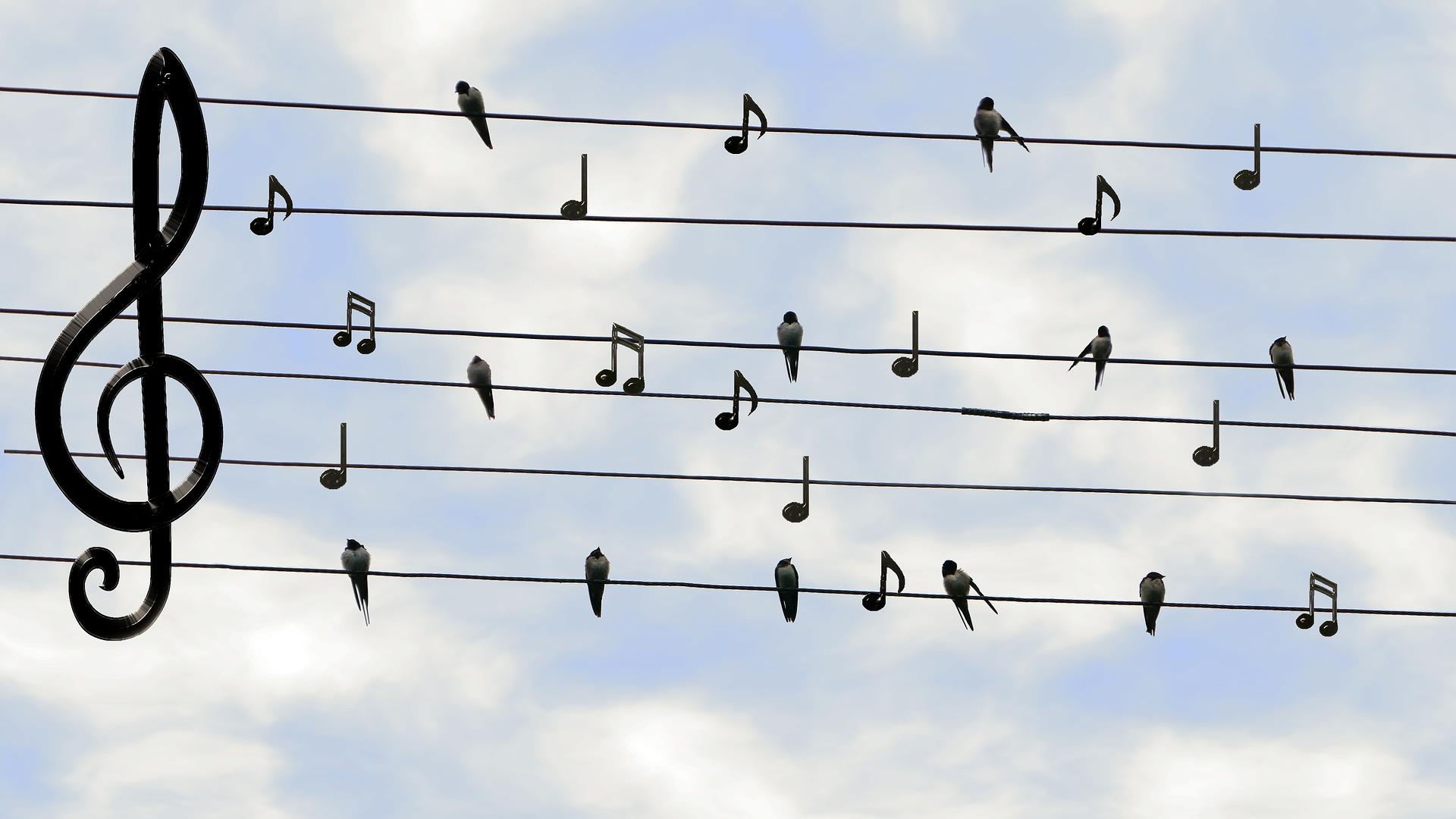 Muzieknoten leren lezen – Mini-cursus, deel 1